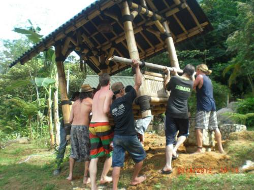 bamboo village kuala lumpur volunteers wwoofers