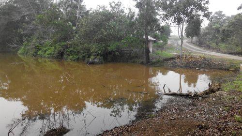 murujan permaculture kuantan malaysia