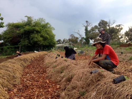 murujan people permaculture experience