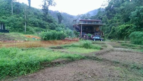 geoff lawton malaysia chalin food forest