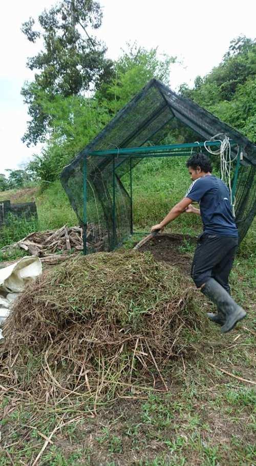 murujan permaculture chalin singapore malaysia